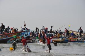 Gambiareis-2012-Vismarkt (14)